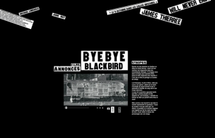 ByeBye Blackbird - Film de Robinson Savary - developpeur php